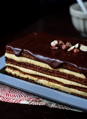 Chocolate-Pumpkin-Torte-1424-11