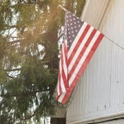Scenes from Americana | Kitchen Confidante | Flag