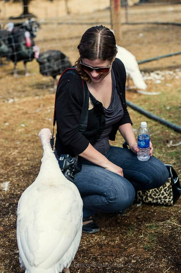 Diestel Turkey Ranch | Kitchen Confidante