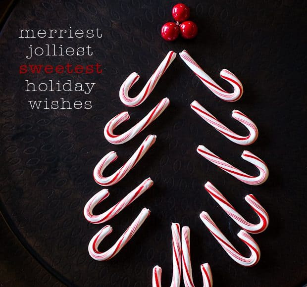 Candy Cane Christmas Tree | Kitchen Confidante | Holiday Greetings 2012