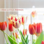 Five Little Things | Kitchen Confidante | Tulips