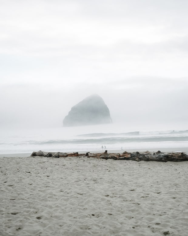 Tillamook #Blog2Farm | www.kitchenconfidante.com | Cape Kiwanda