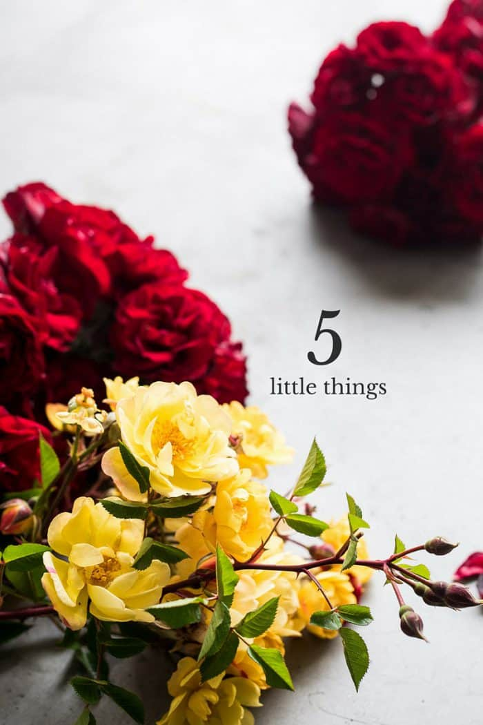 Five Little Things I loved the week of May 13, 2016.