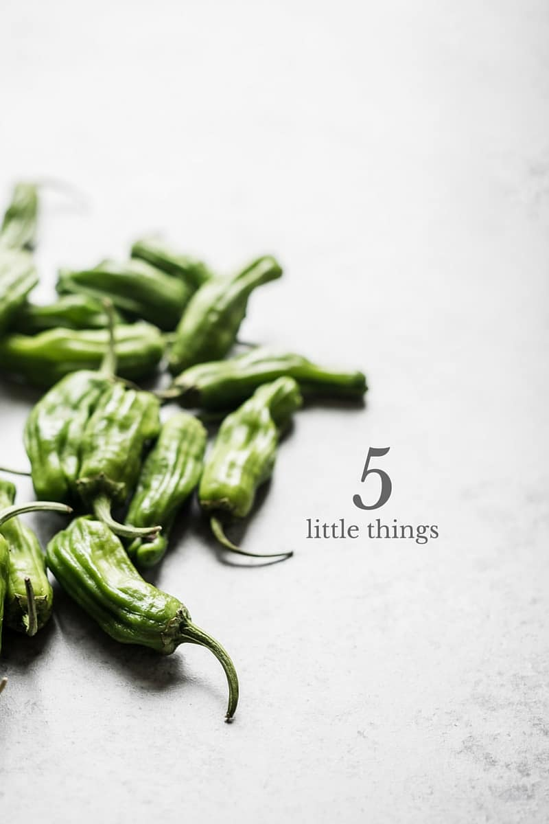 Five Little Things I loved the week of June 17, 2016 - Shishito peppers.