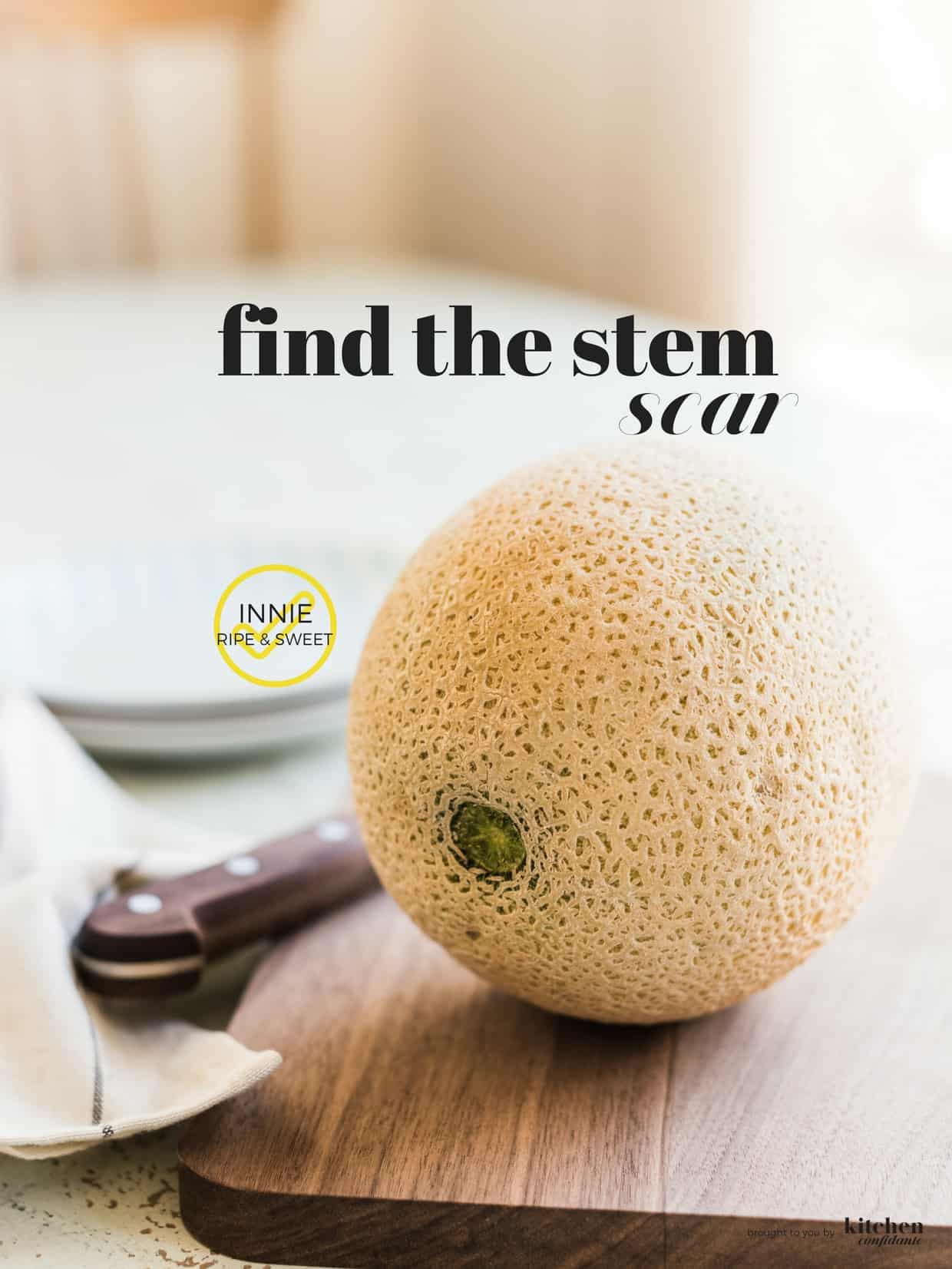How to Pick a Perfect Cantaloupe - This One Quick Tip will guarantee a sweet and ripe melon every time!