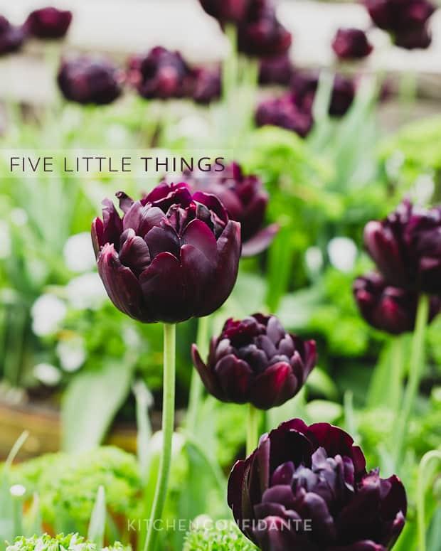 Five Little Things | Kitchen Confidante | Purple Tulips