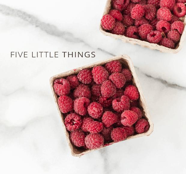 Five Little Things | June-28-2013 | www.kitchenconfidante.com