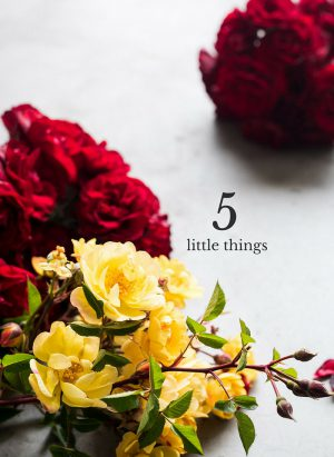 "Red and yellow flowers with overlay text reading ""Five Little Things"""