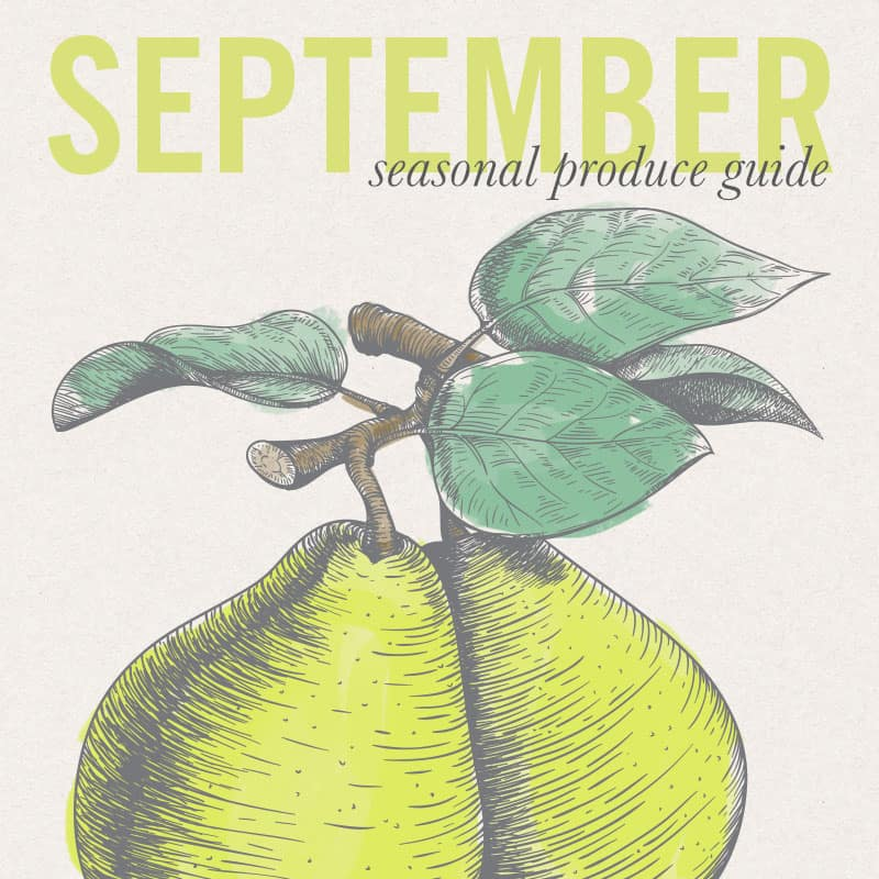 Eat Seasonal - September Produce Guide