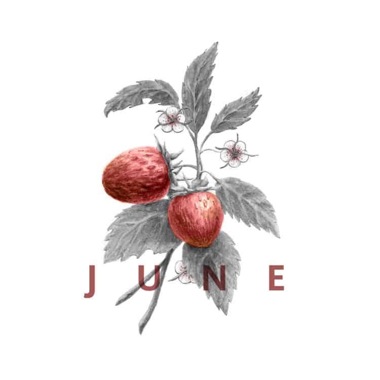 #EatSeasonal June Recipes