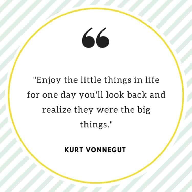 A quote from Kurt Vonnegut.