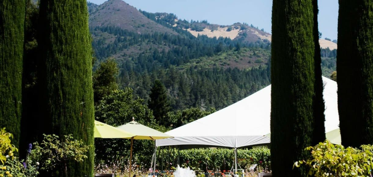 The grounds at Landmark Vineyards.