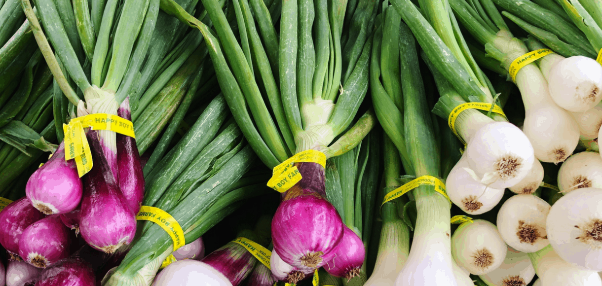 Purple and white spring onions at a Bay Area farmer's market.