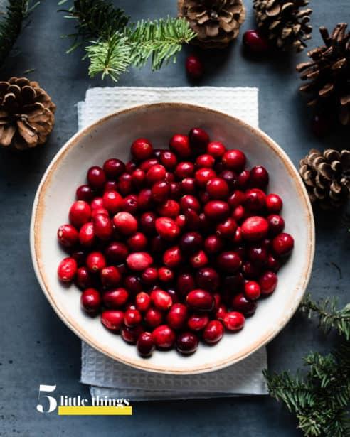 A bowl of fresh cranberries.