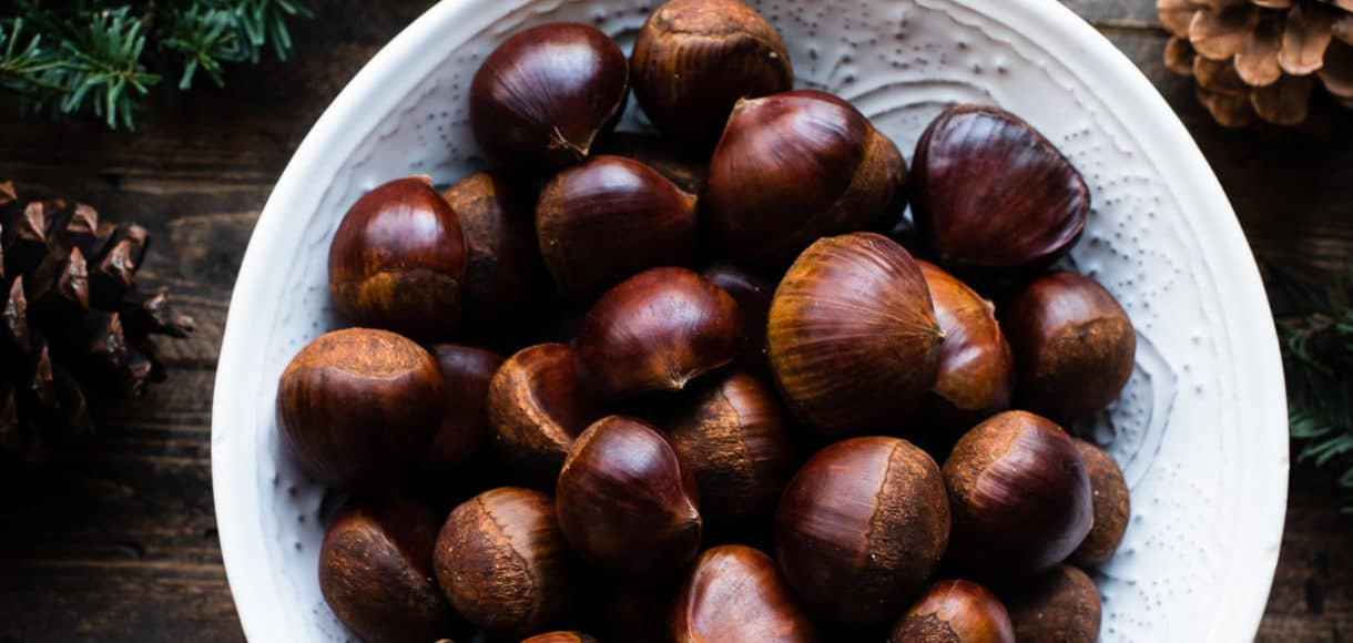 Fresh chestnuts for oven-roasted chestnut recipe in a white bowl on wooden table with evergreen, pinecones and oranges.