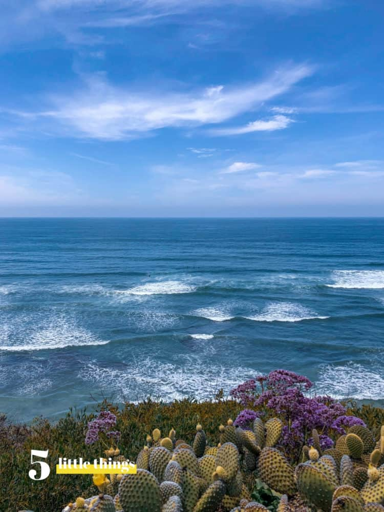 The San Diego surf and sun was one of Five Little Things I loved the week of May 24, 2019.