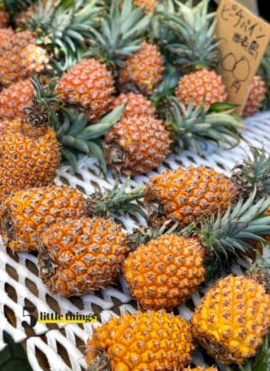 Okinawan pineapple in Okinawa, Japan.