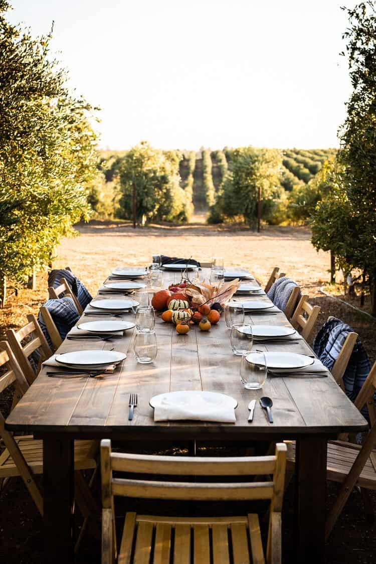 Dinner in the olive groves during Cobram Estate Harvest 2019.