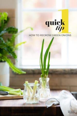 Green onion cuttings in a glass jar.
