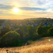 Golden hour in California